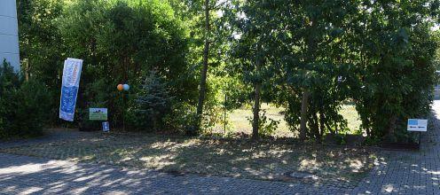 Physiotherapie-Praxis für Hunde in Ettlingen